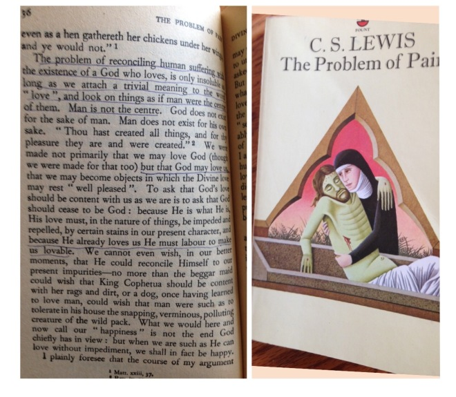 My 1983 copy, along with slightly yellowed pages and underlined sections. Interesting to see what I underlined then....