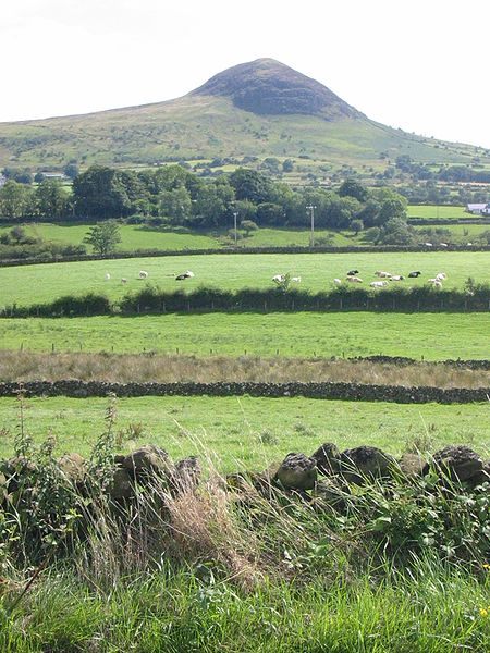 450px-Slemish_mountain_County_Antrim